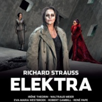 Elektra, dos veces implacable