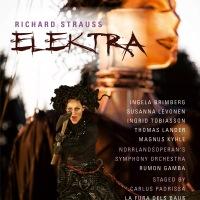 """""""Enfuracida"""" Elektra desde el confín sueco"""